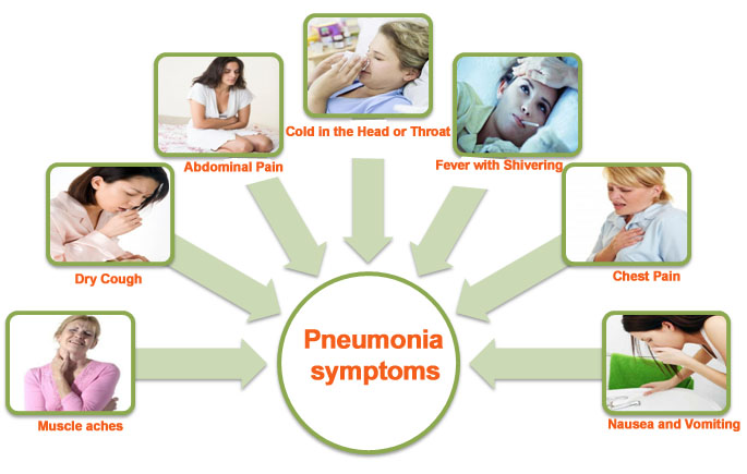 pneumonia – health park pharmacy, Human Body
